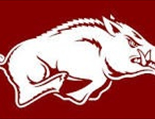 Hog logo_5011602575316107886