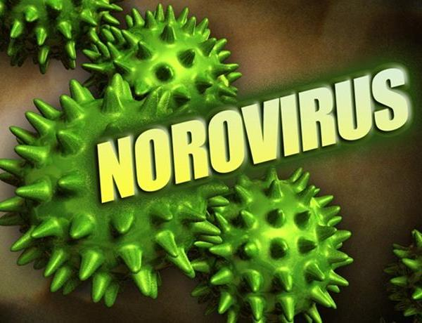 Norovirus_ Why Washing Your Hands Isn't Enough__-6288147562652547602
