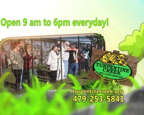 Turpentine Creek_68910814-159532