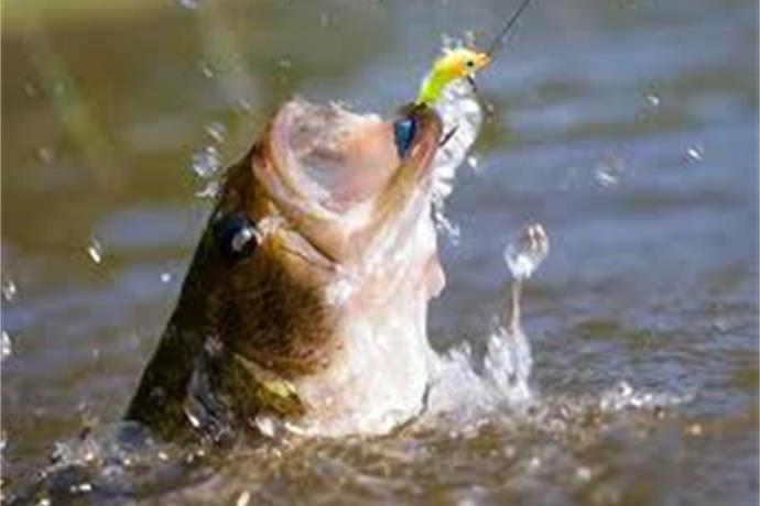 Free Fishing Weekend Across Arkansas_-8508280604323393694