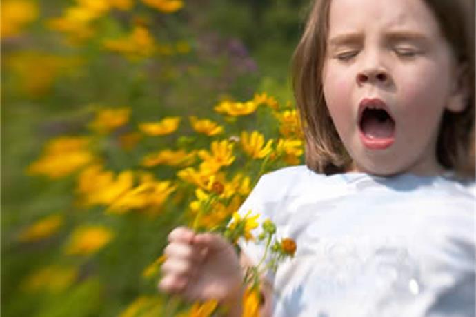 Sniffles & Sneezes Spread through Northwest Arkansas_-1786875776863941138