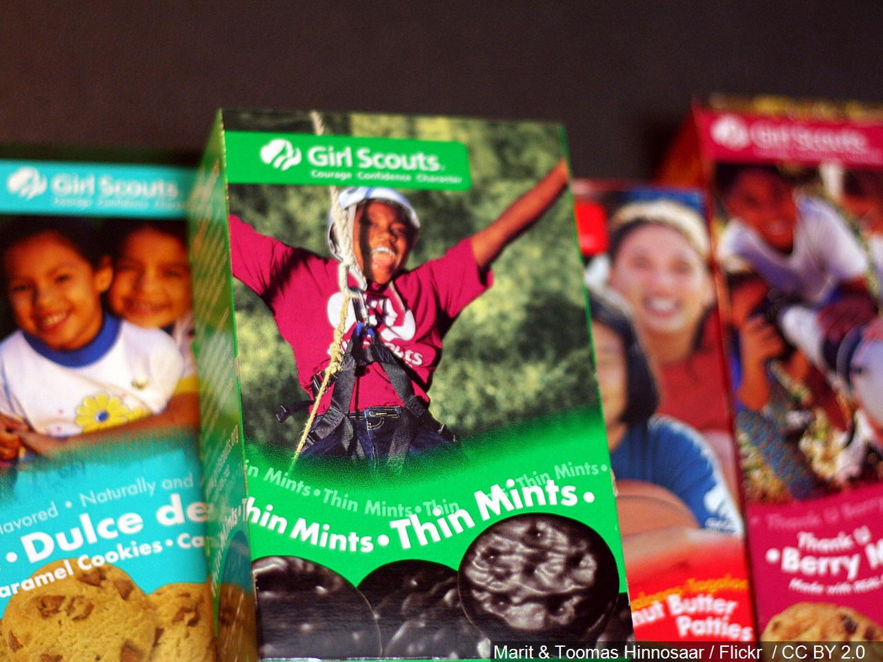 Girl Scout cookies.jpg