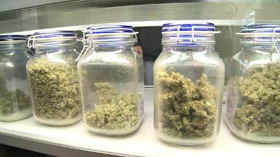 Mass-medical-marijuana-jpg_20160629190955-159532