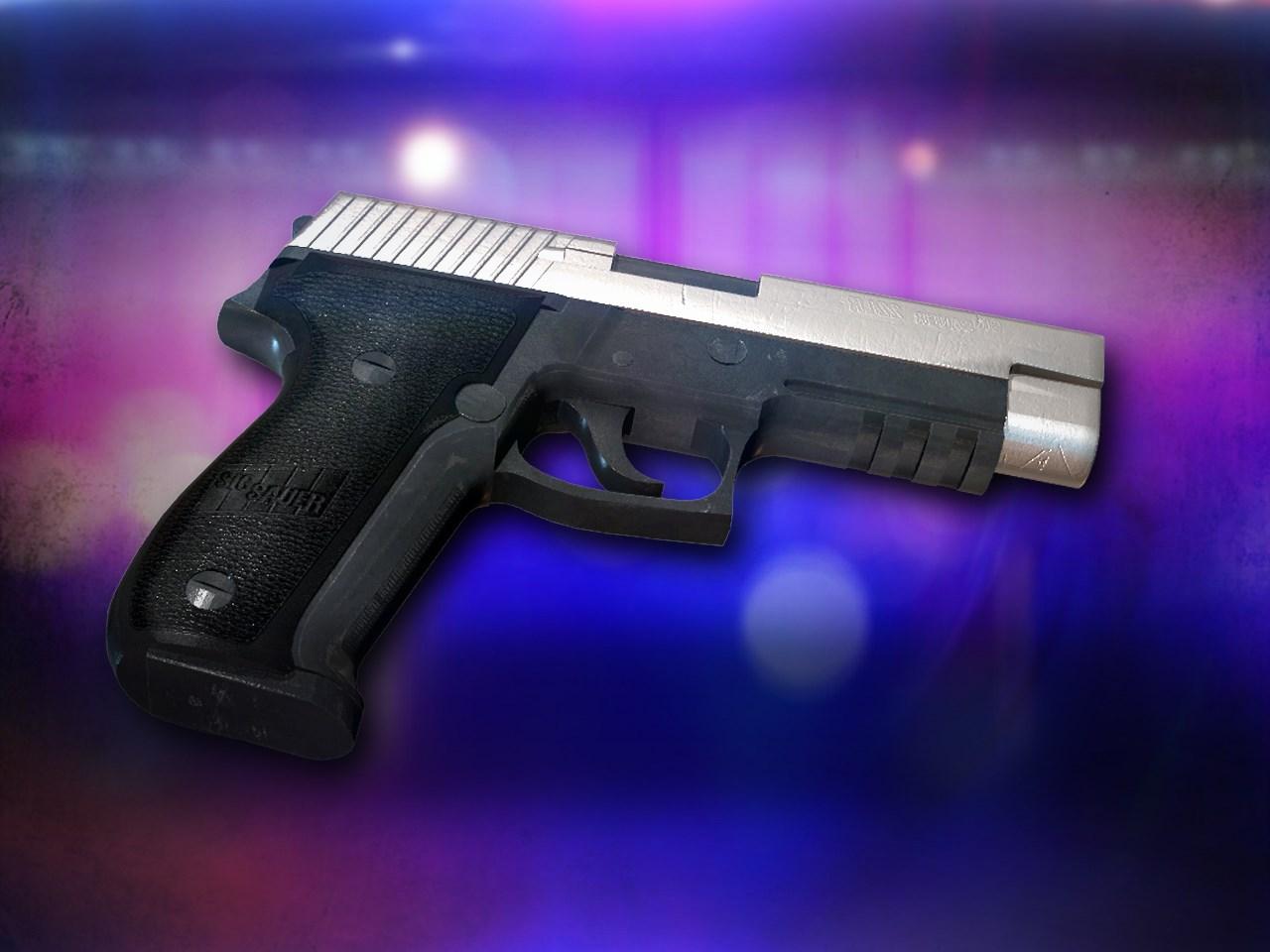 police gun_1479908738584.jpg