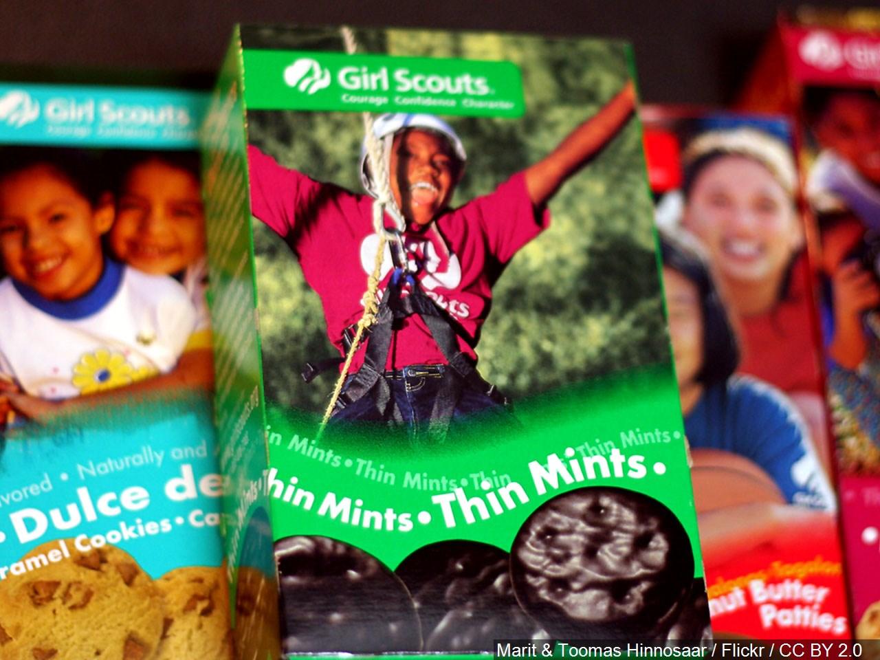 girl scout cookies_generic.jpg