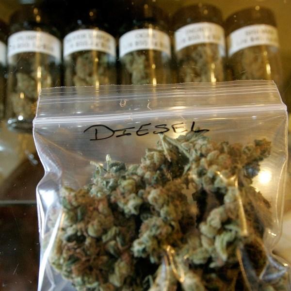 stock recreational marijuana87619506-159532