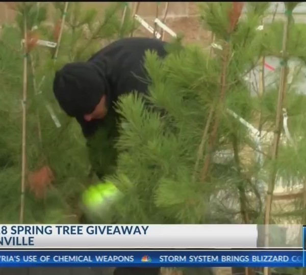 Spring Tree Giveaway (KNWA)
