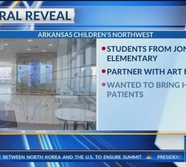 Arkansas_Childern_s_Hospital_Mural_Revea_0_20180517121053