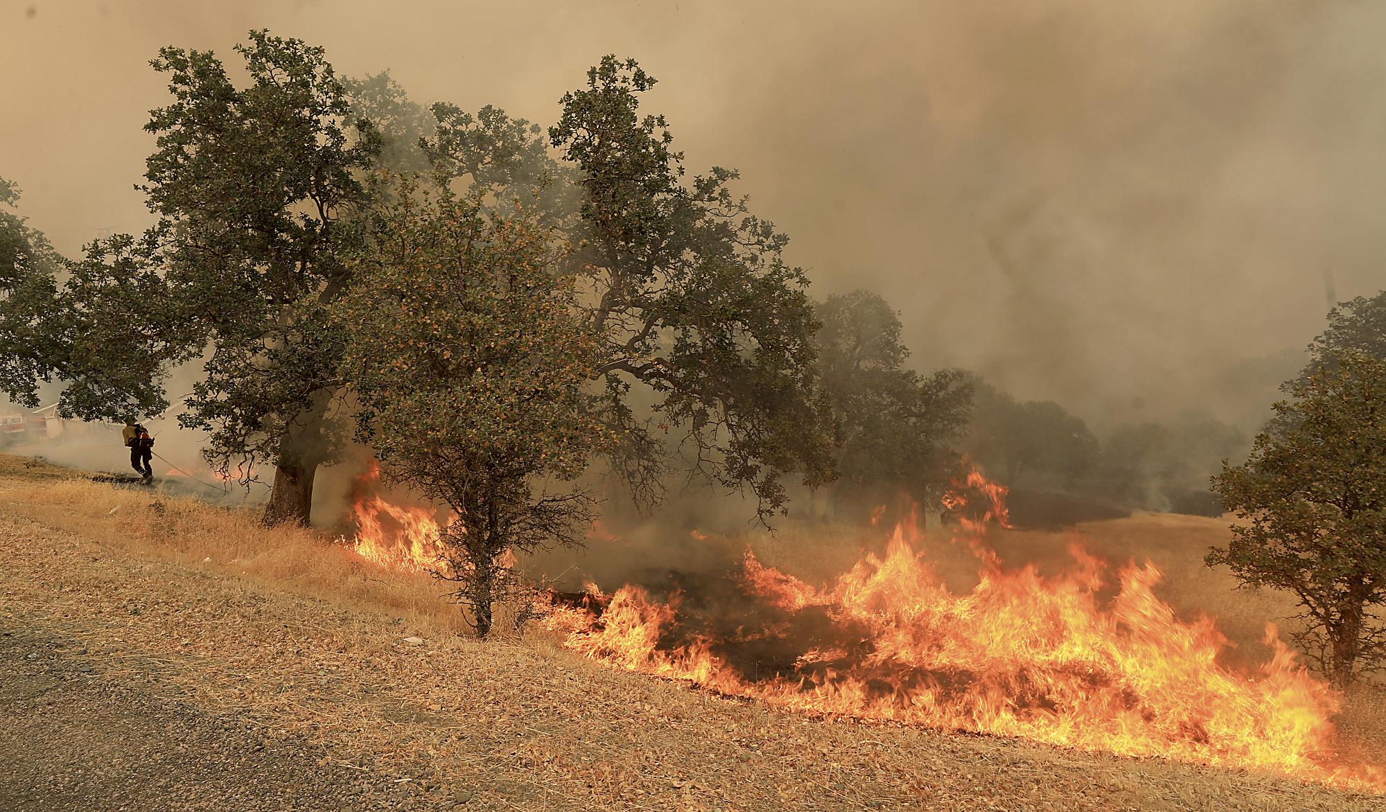 California_Wildfires_09071-159532.jpg49574506