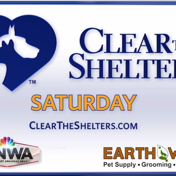 Clear the Shelters Fullscreen_1534367333944.jpg.jpg