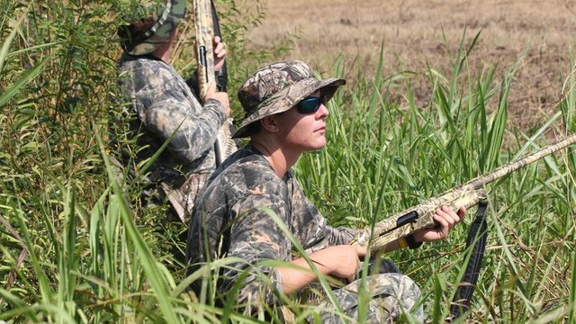 Dove hunting AGFC Photo_1535135116810.jpg_52970938_ver1.0_640_360_1535229746216.jpg.jpg