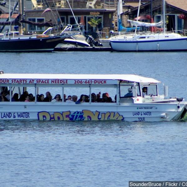 duck boat pic_1534517648391.jpg.jpg