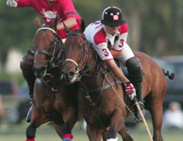 20th Polo In the Ozarks_68541011371577051