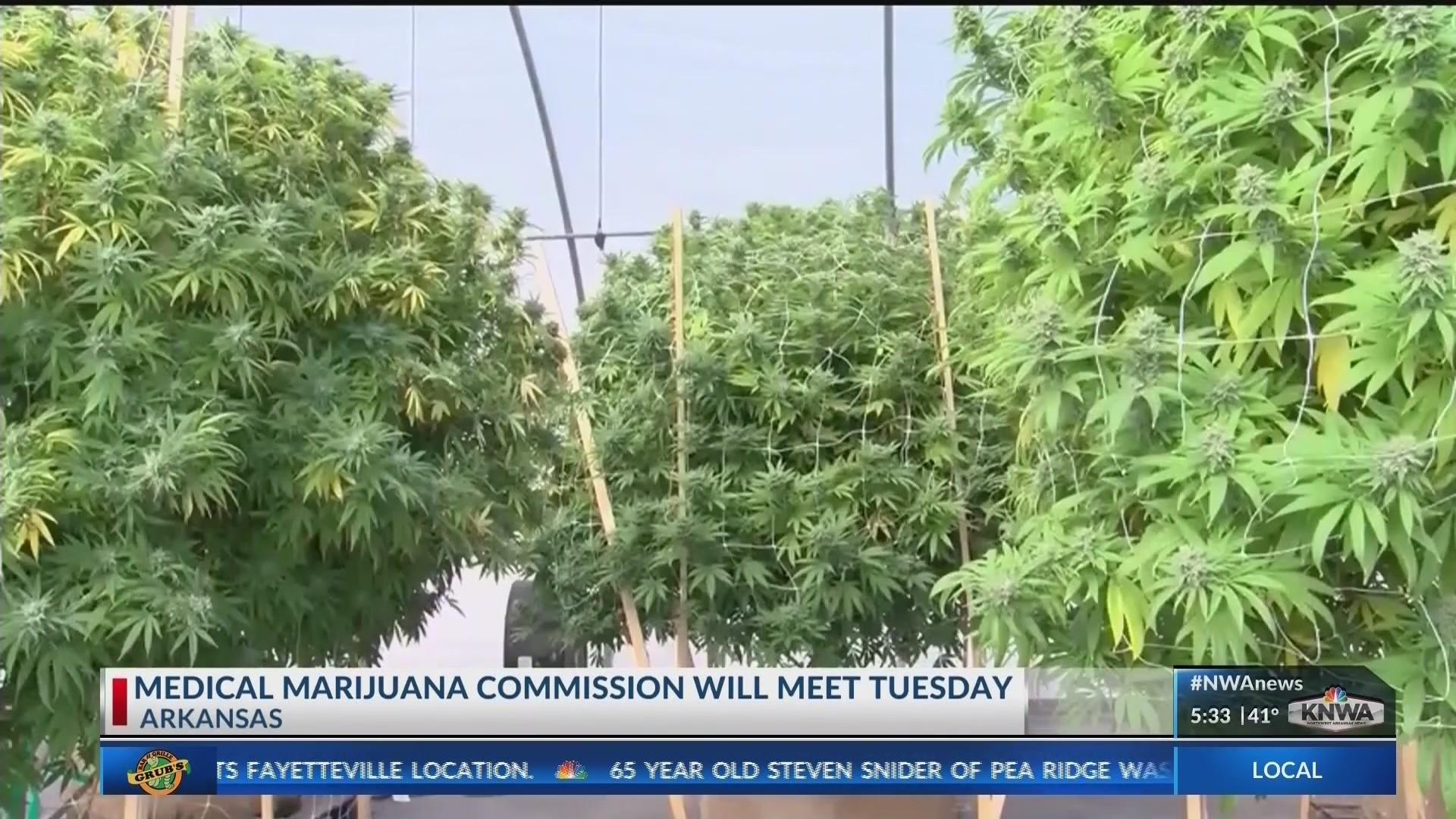 Arkansas___s_Medical_Marijuana_Commissio_0_20181016121705