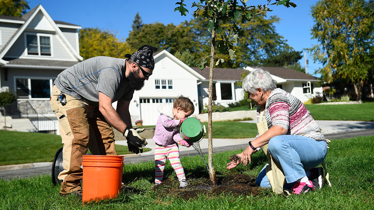 arbor-day-green-living-planting-trees-spring_1522775864197_357295_ver1_20180404055701-159532
