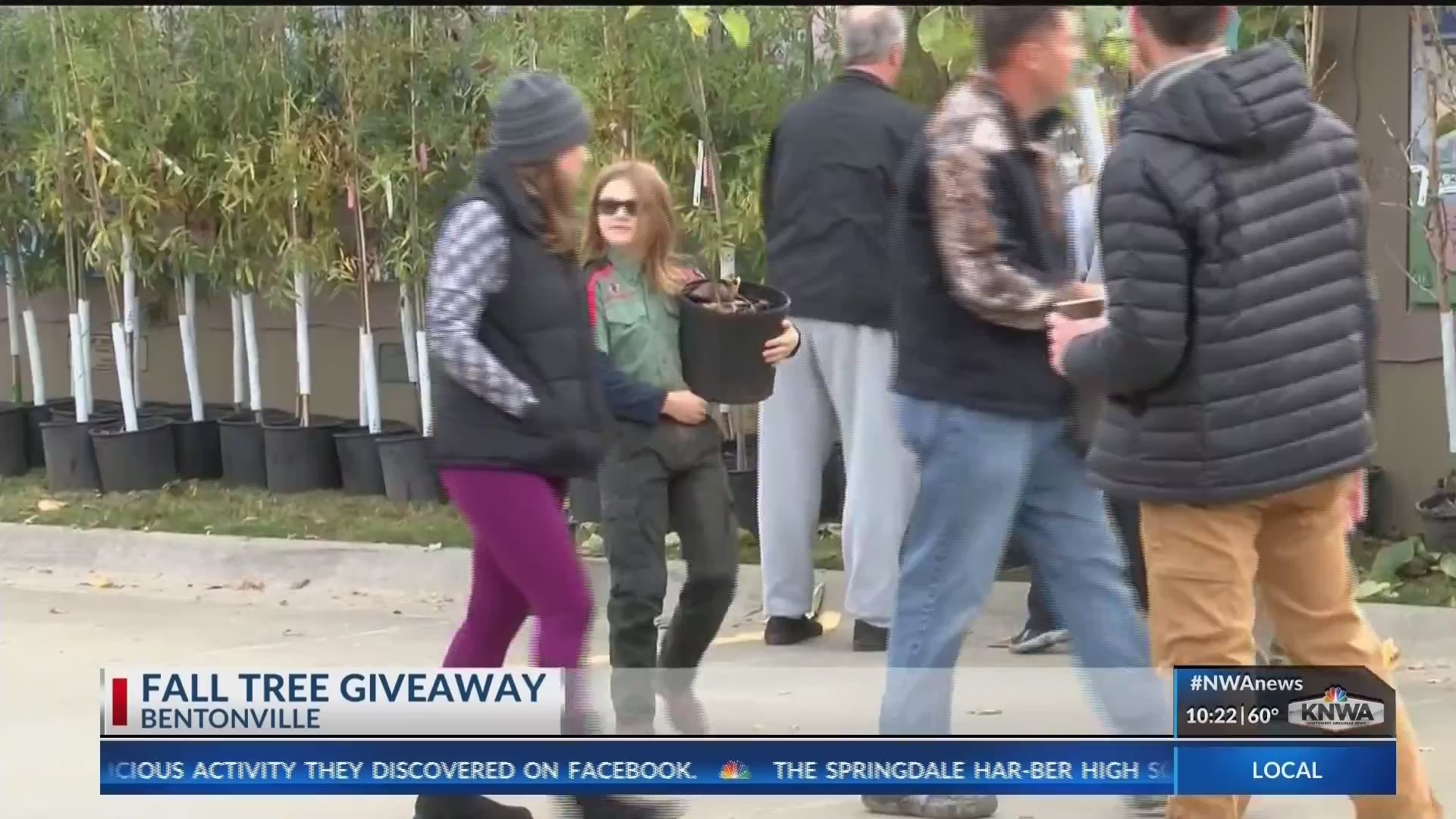 Bentonville_Residents_Received_Free_Tree_0_20181104033012