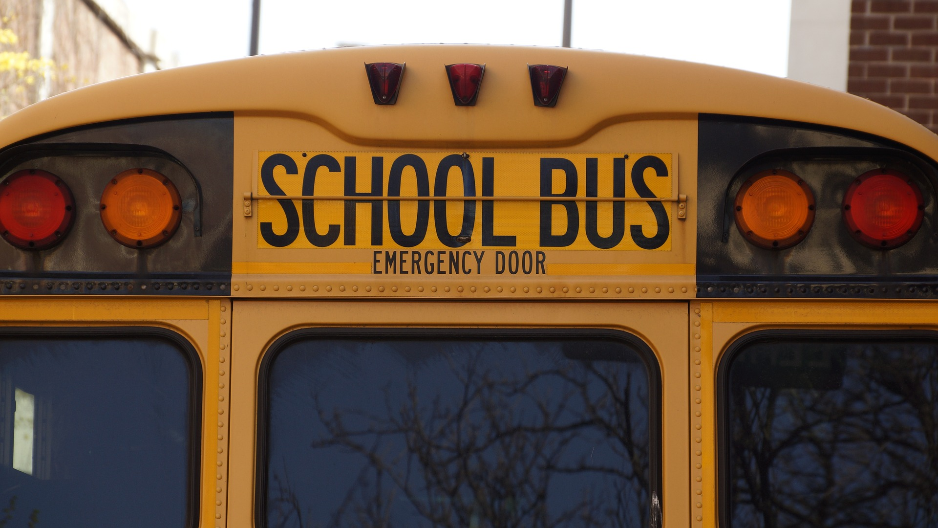 bus-1319360_1920_1547219580699.jpg