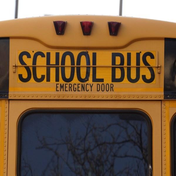 bus-1319360_1920_1548775193641.jpg