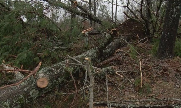 EF_1_Tornado_Hits_in_Marion_County_0_20190208173733