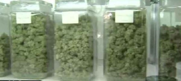 Medical Marijuana_1553030387232.JPG.jpg