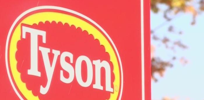 Tyson_1558031119115.JPG