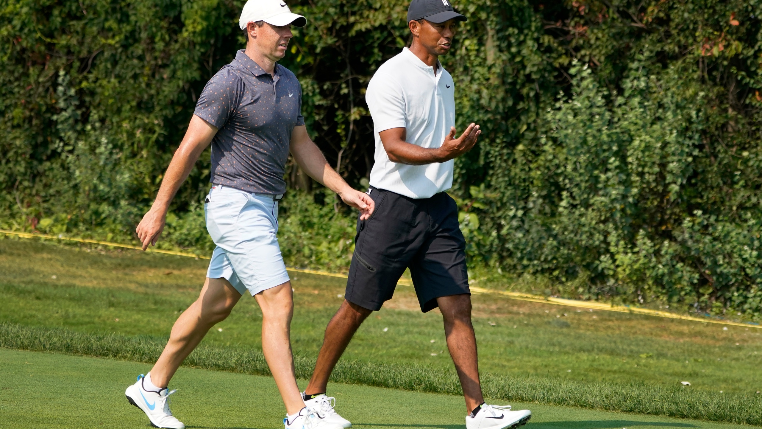 Rory McIlroy, Tiger Woods
